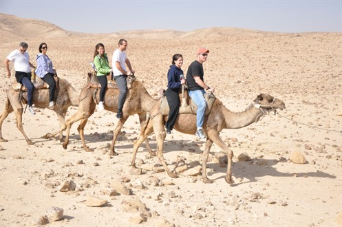 One time experience riding a Camel